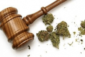 Marijuana Rules for Condominiums